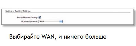Галочка «Enable Multicast»